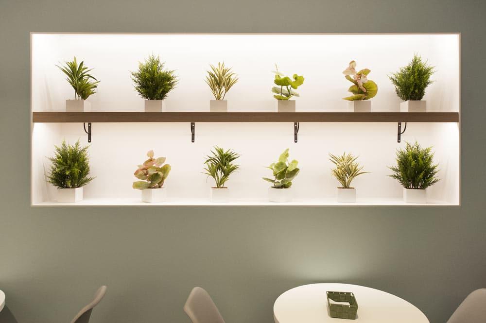 Nichos decorativos en pared con iluminación led. Plantas en mecetas